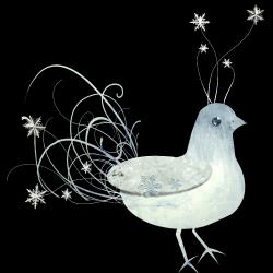 JofiaDevoe-snowbird-sh.th.png