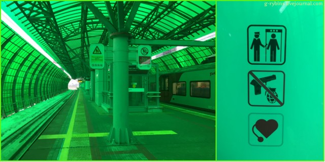 collage82.jpg