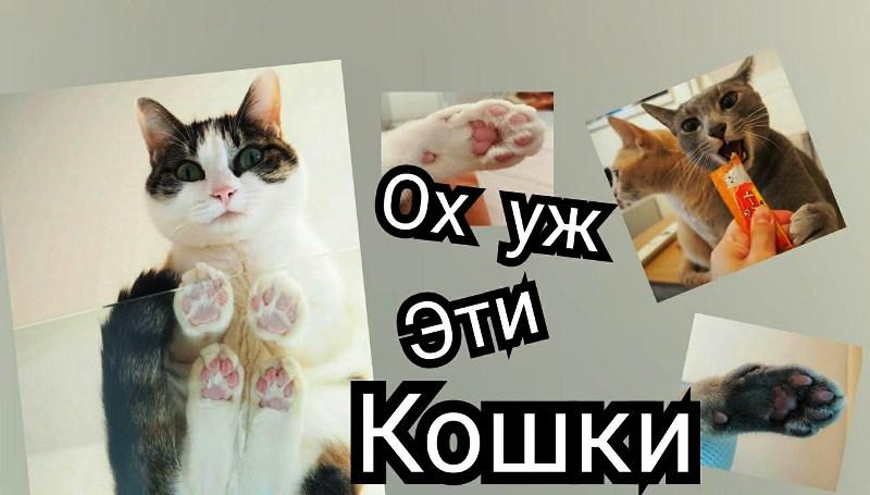 KOSKI-YYYYYYY-Y.jpg